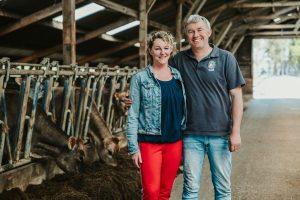 jersey koe eigenaren