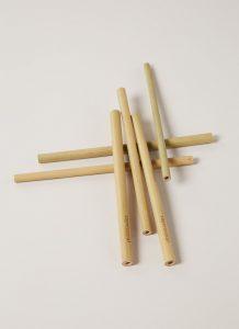 bamboo duurzame rietjes