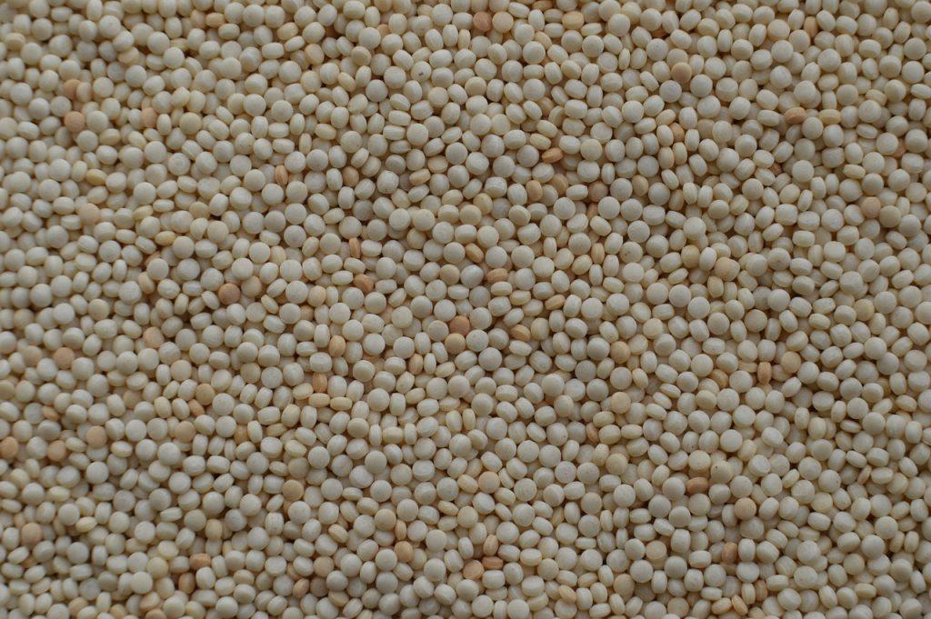 couscous parelcouscous verschil